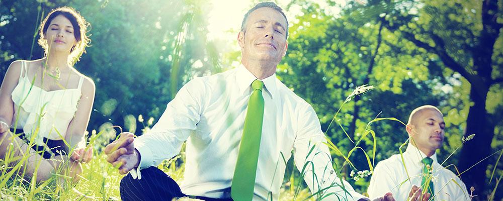 corporate wellness programs work